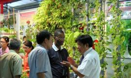 Techmart Quảng Nam 2011 diễn ra vào tháng 7